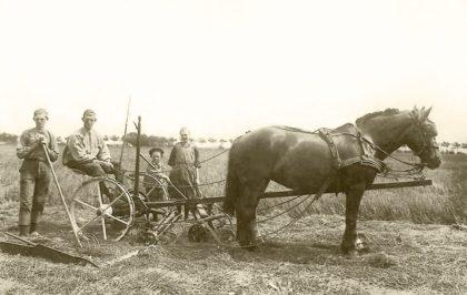 Tentoonstelling Vervaagd Agrarisch Verleden